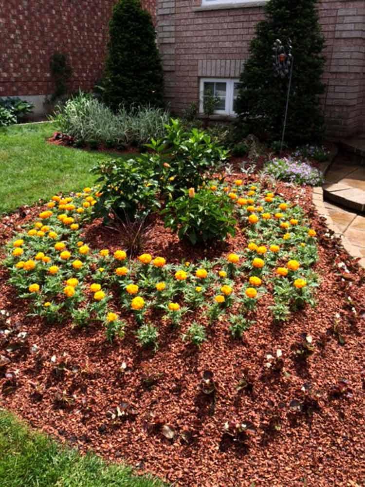 Landscaping, Gardening