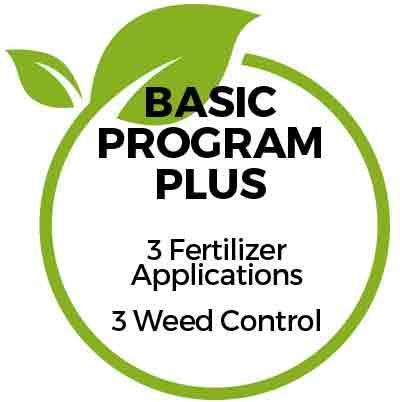Basic Program Plus